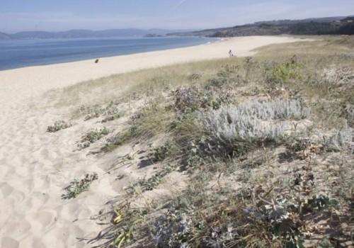 playas-galicia-queiruga-santiago-de-compostela-hostal-mexico-4